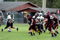 N PROGRESS ECMS FB vs DIberville 2014